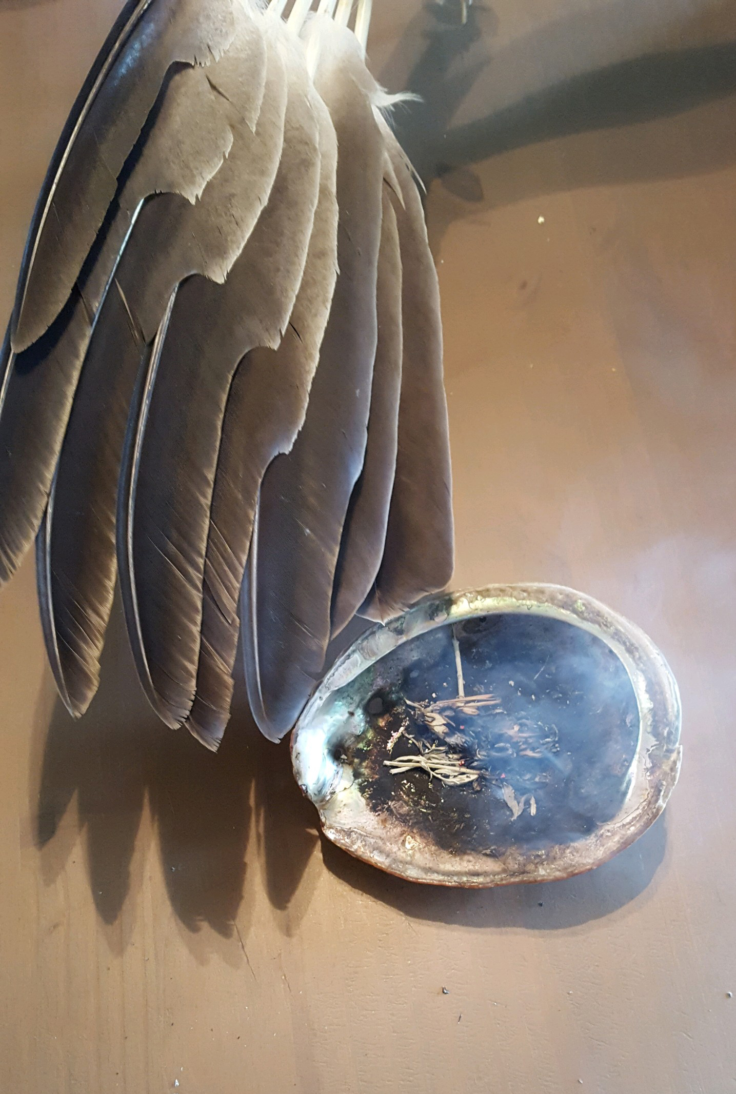 Eagle wing fan with burning sage in a shell.